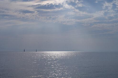 Germany, Langenargen, Lake Constance - SMF00371