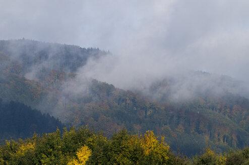 Germany, Baden Württemberg, Autumn Landscape - SMF00349