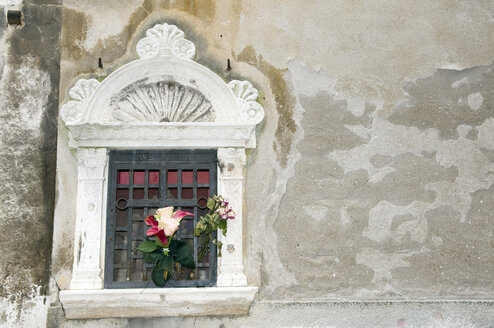 Italy, Venice, Window with plastic flowers, close up - AWDF00192