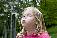 Little girl (6-7) blowing dandelions, close up - GNF01050