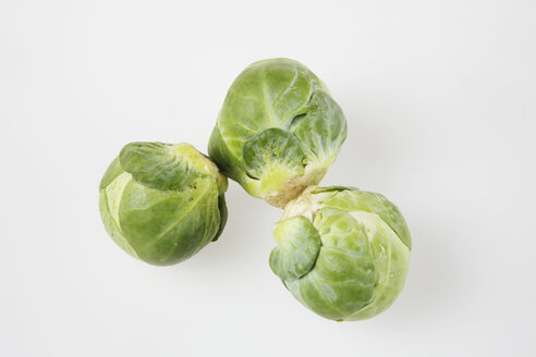 Raw Brussels sprouts - KSWF00236