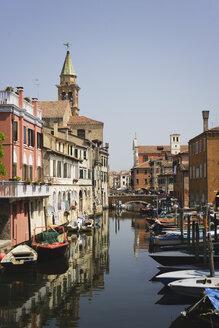 Italy, Chioggia, Vena Canal, Fishing harbor - WWF00352