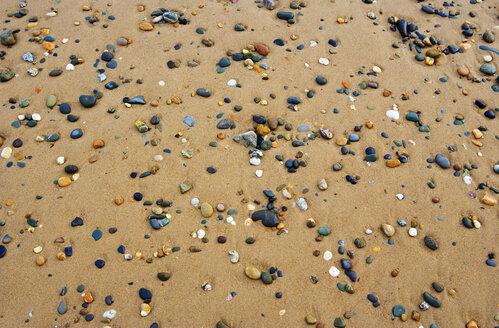 Pebbles on shore, full frame - WWF00725
