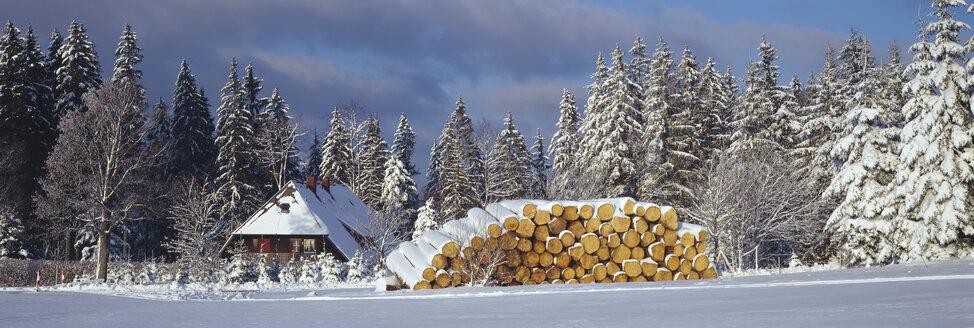 Germany, Baden-Württemberg, Schwarzwald, Thurner, Snowscape - SH00311
