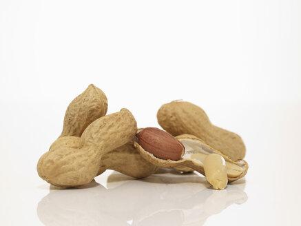Peanuts, close-up - AKF00082