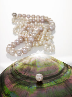 Pearl on seashell, pearl necklet in background - AKF00001