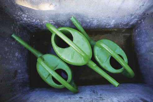 Three watering cans in a trough, elevated view - WWF00457