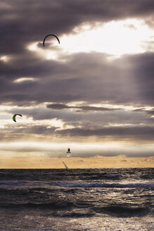 Germany, Mecklenburg-Vorpommern, Wustrow, Windsurfing and Kiteboarding - WWF00537