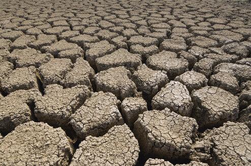 USA, Utah, Soil erosion - RUEF00158