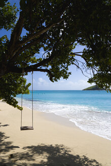St Vincent, Grenadines, Caribbean, canouan Island, Glossy bay, Swing on tree - PSF00003