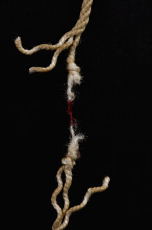 Blood stained on rope, close-up - AWDF00362