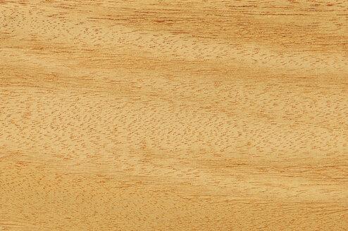 Wood surface, Opepe wood (Nauclea Trillesii) full frame - CRF01706