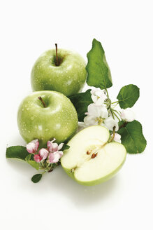 Sliced green apple and apple blossom, elevated view - 11249CS-U
