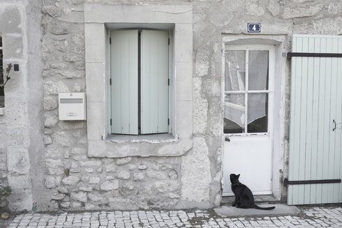 France, Provence, Cat sitting in front of entry door - THF01071
