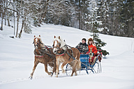 Austria, Salzburger Land, Couple  transporting Christmas tree on sleigh, smiling, portrait - HHF03023