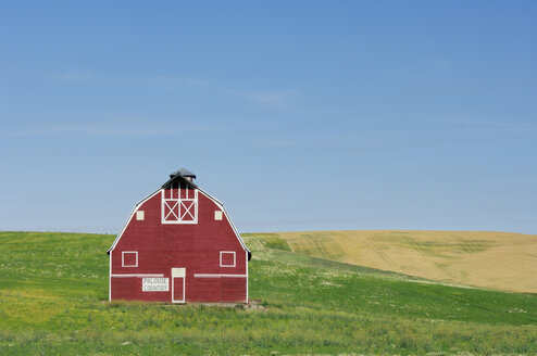 USA, Palouse, Whitman County, Washington State, Barn in field - RUEF00297