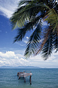 Asia, Thailand, Koh Samui, Ocean view with boardwalk, palm leaf in foreground - PSF00362