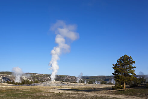 USA, Yellowstone Park, Wyoming, Old Faithful Geyser - FOF01766