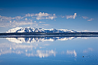 USA, Yellowstone Park, Yellowstone Lake - FOF01817