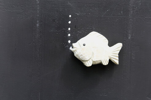 Plastic fish on blackboard - AWDF00417