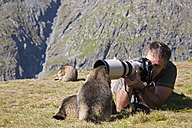 Austria, Grossglockner, Man taking photograph of Alpine Marmots (Marmota marmota) - FOF01937
