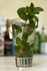 Mojito cocktail with mint, close-up. - CHK00979