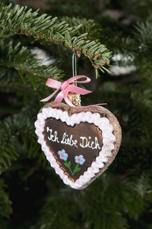 Gingerbread heart hanging from branch. - AWDF00491