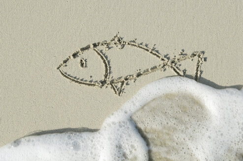 Fish drawn in sand on beach by sea. - CRF01856