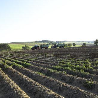 Germany, Hessen, Tractor in rural field - AKF00158