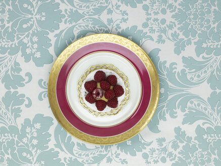 Raspberry tartlet in plate against patterned background - AKF00137