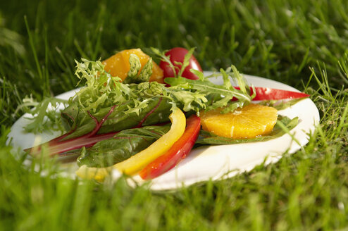 Germany, Munich, Salad on plate in grass - SRSF00097
