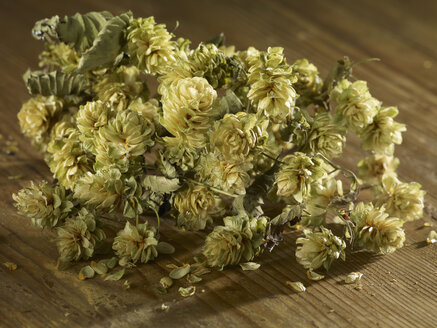 Dried hops on wooden surface - SRSF00205