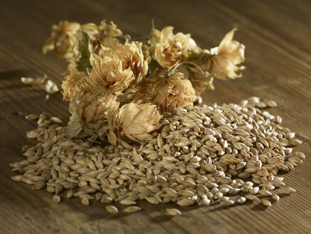 Malting barley and hops on wooden surface - SRSF00202