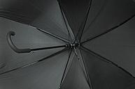 Close up of open black umbrella - ASF04098