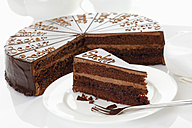 Sacher cake slice in plate - 13338CS-U