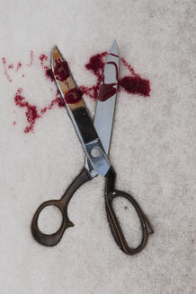 Germany, Close up of scissors with blood in snowy winter - AWDF000598