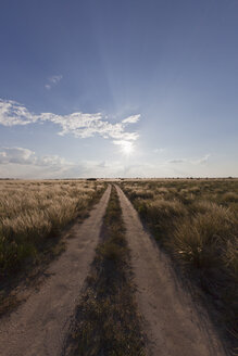 Africa, Botswana, View of central kalahari game reserve with track - FOF002140