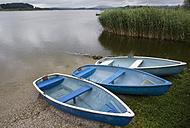 Austria, Land Salzburg, Wallersee, View of fishing boats at shore - WWF001388
