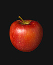 Red apple against black background - PSF000589