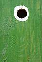 Austria, Land Salzburg, Flachgau, Close up of bird house - WWF001547