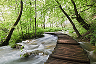Europe, Croatia, Jezera, View of boardwalk at plitvice lakes national park - FOF002273