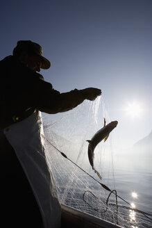 Austria, Mondsee, Fisherman caught a fish in fishing net - WWF001683