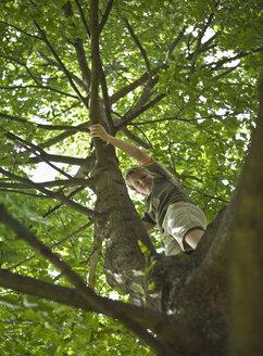 Germany, Vechelde, Boy standing on tree branch - HKF000345
