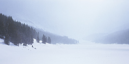 Canada, British Columbia, View of landscape in winter - WBF000205
