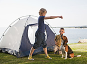 Croatia, Zadar, Girl and boy playing with dog in front of tent at beach - HSIF000103