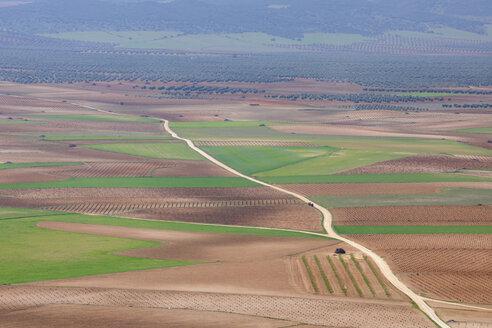 Spain, Castilla-La Mancha, Toledo Province, Consuegra, View of dirt road passing through fields - RUEF000604