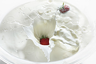 Strawberries dropping into milk, close up - CSF013885