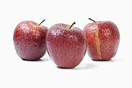 Three red apples on white background - MAEF002833