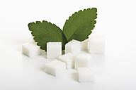 Sugar lumps and stevia leaves on white background - CSF014146