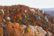 Austria, Lower Austria, Waldviertel, Wachau, View of forest and rock formations in autumn near Duernstein - SIEF000085